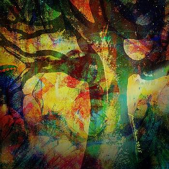 Festival Baobab by Fania Simon