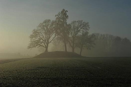 Fiddler's Mound by Randi Grace Nilsberg