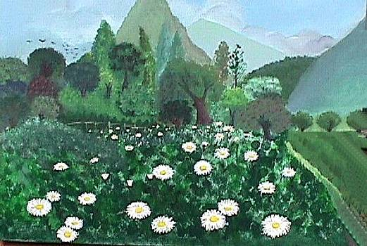 Field of Daysies by Janine Shideler
