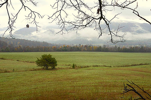 Fields and Mountains by Charles Bacon Jr