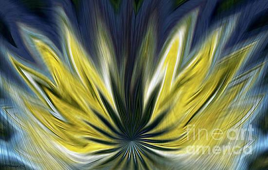Fiery Flower by Marlena Nowaczyk