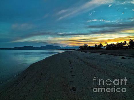Fiji Dawn by Karen Lewis