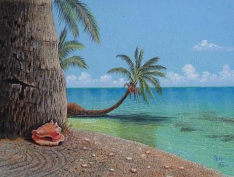 Fiji Palm by Pravin  Sen