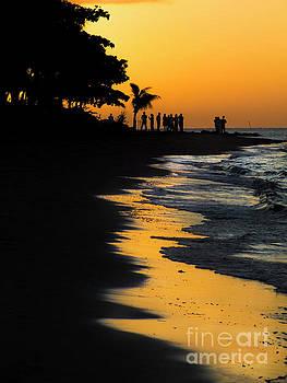 Fijian Sunset by Karen Lewis