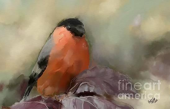 Finch by Carrie Joy Byrnes