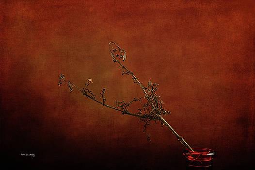 Find a Way by Randi Grace Nilsberg