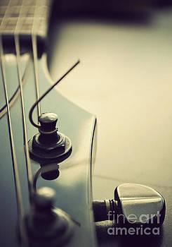 Fine Tuning by Lyn Randle
