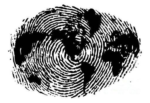 fingerprint 20X30 by Sassan Filsoof