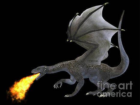 Corey Ford - Fire Breathing Dragon