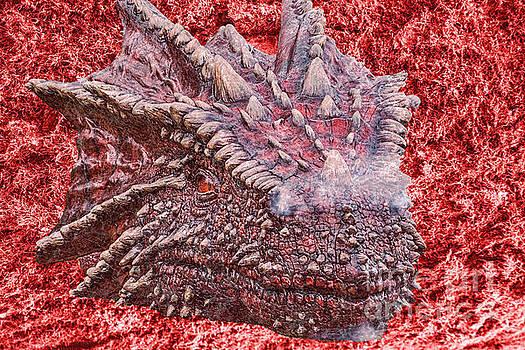 Steve Purnell - Fire Dragon