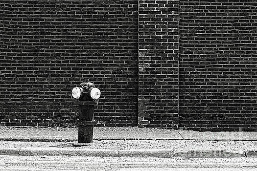 Fire Hydrant in Black and White by Emily Kay