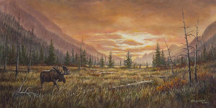Fire In the Sky by Kim Lockman