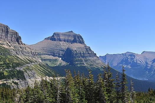 Fire Within Glacier National Park by Dacia Doroff