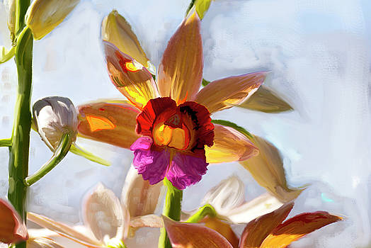 Firefox  Orchid Painting by Don  Wright