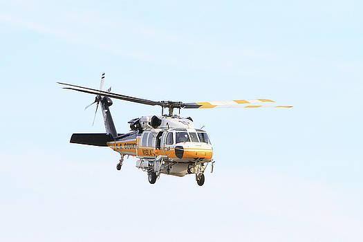 Firehawk in Flight by Shoal Hollingsworth