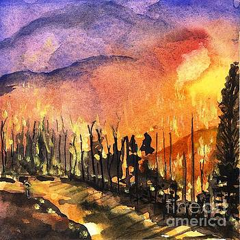 Fires in Our Mountains Tonight by Randy Sprout
