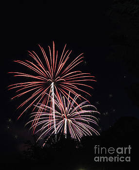 Fireworks 1 by Janie Johnson