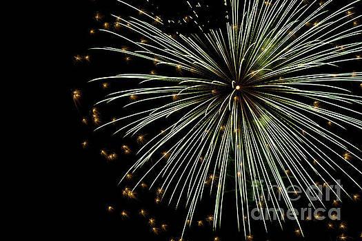 Fireworks 2016 by Tara Lynn