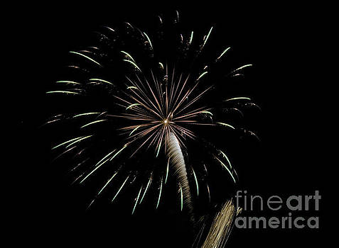Fireworks 3 by Janie Johnson