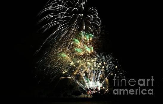 Fireworks by Craig Wood