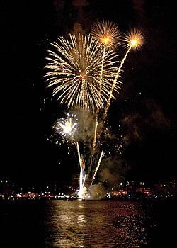 Fireworks by Nora Blansett