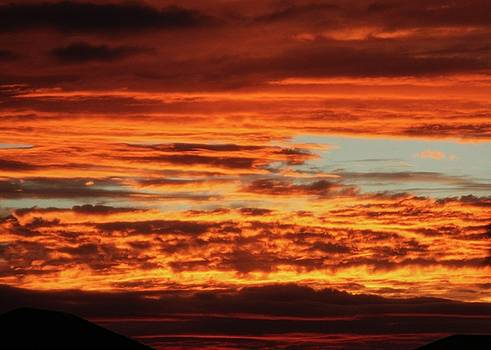 Sabrina L Ryan - Firey Sunset