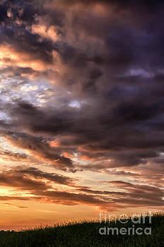 First Light of Dawn by Thomas R Fletcher