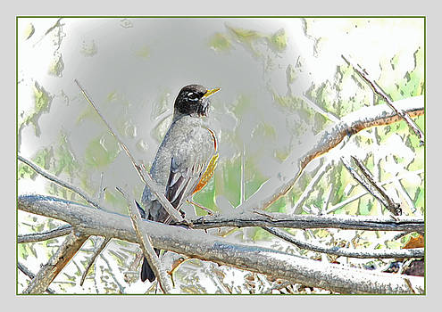 First Robin of Spring by Gretchen Wrede