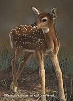 First Steps - Fawn by Rebecca Latham