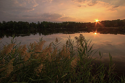 First Sun Rays  by Chris Burke