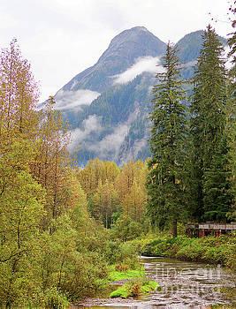 Stanza Widen - Fish Creek Autumn