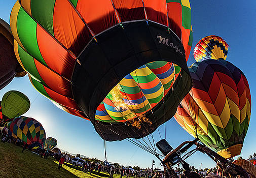 Fish Eye View of the Balloon Races by Janis Knight