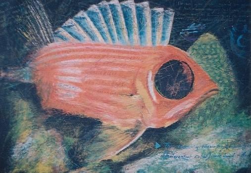 Fish31 by Senol Sak