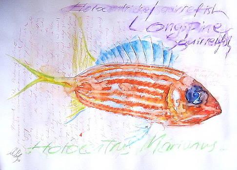 Fish36 by Senol Sak