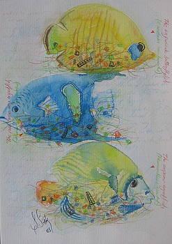 Fish41 by Senol Sak