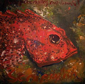 Fish6 by Senol Sak