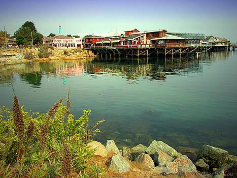 Joyce Dickens - Fishermans Wharf Monterey CA II