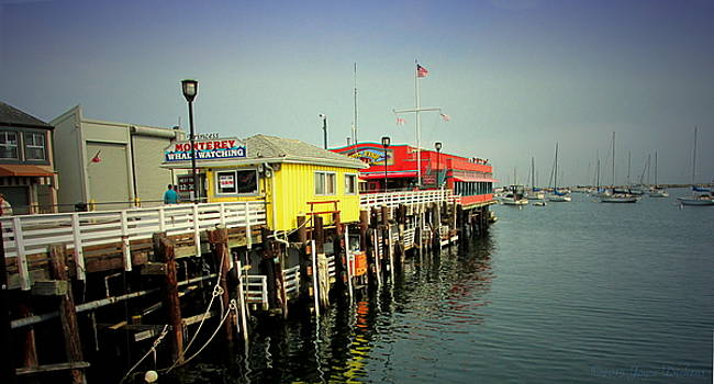 Joyce Dickens - Fishermans Wharf Monterey CA