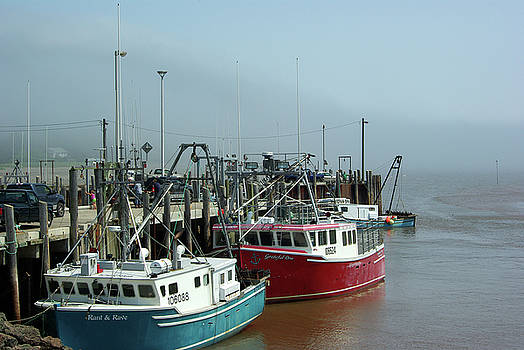 Fishing Boats in the Alma Mist by Paul Wash