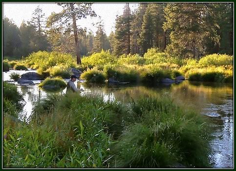 Fishing Stream by Linda Seifried