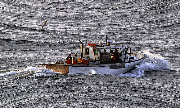 Fishing the Waters of Down East Maine by Marty Saccone