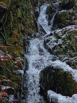 Fitzgerald Falls is Along the Appalachian Trail 4 by Raymond Salani III