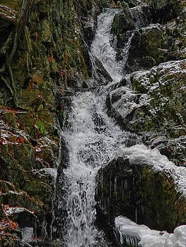 Fitzgerald Falls is Along the Appalachian Trail 5 by Raymond Salani III