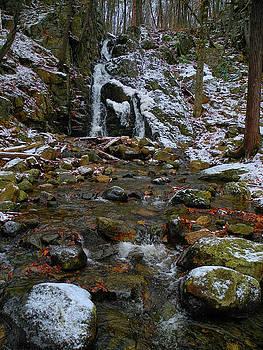 Fitzgerald Falls is Along the Appalachian Trail 7 by Raymond Salani III