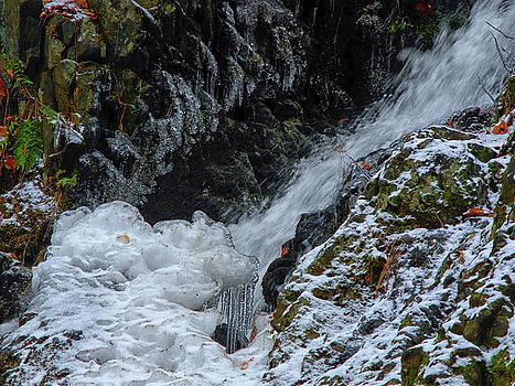 Fitzgerald Falls is Along the Appalachian Trail by Raymond Salani III