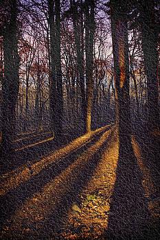 Five O'Clock Shadow by Yuri Lev