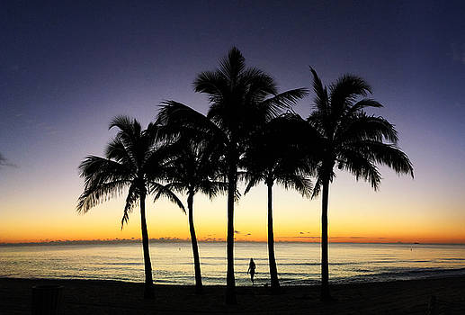 Five palms, an ocean and a girl with a dog. by Andrew Royston