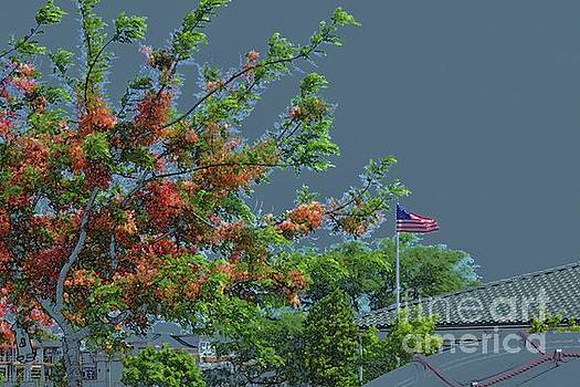 Flag and Shower Tree by Craig Wood