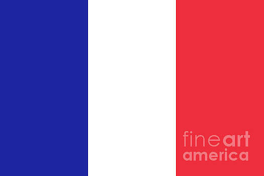 Flag of France High quality authentic image by Bruce Stanfield