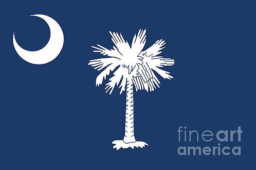 Flag of South Carolina Authentic version by Bruce Stanfield